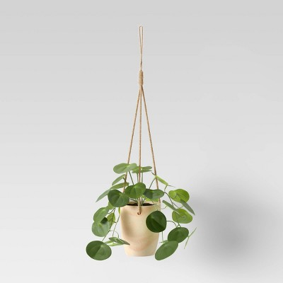 Hanging Succulent with Wood Base - Opalhouse™