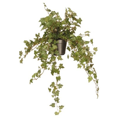Garden Accents Artificial Ivy Plant Green 12  - National Tree Company®