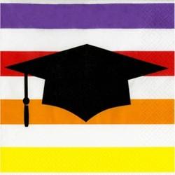40ct Graduation Striped Lunch Napkin - Spritz™