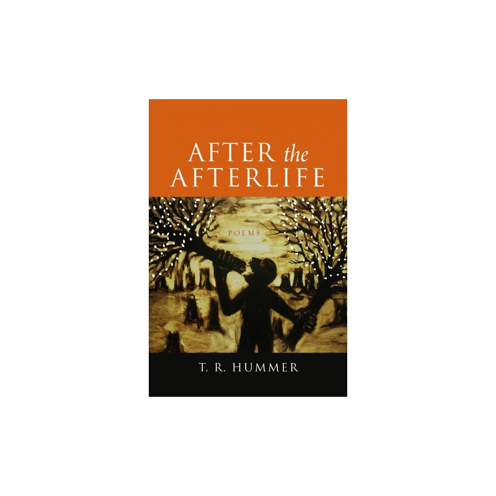 After the Afterlife - by T. R. Hummer (Paperback)