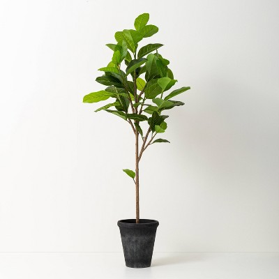 "60"" Faux Audrey Ficus Tree - Hearth & Hand™ with Magnolia"