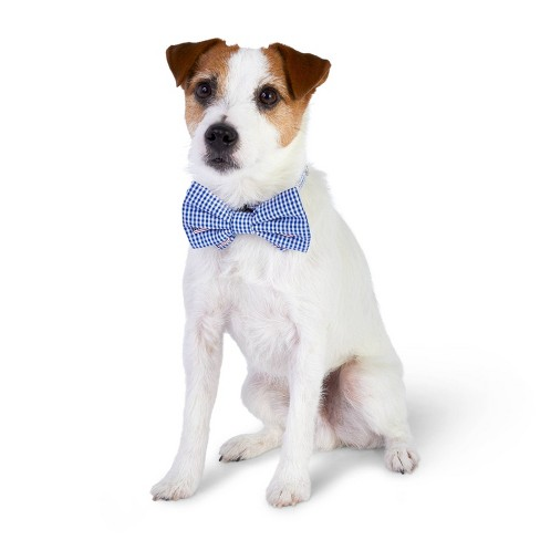 41bbca26f0a3 Flag Whale And Gingham Collar Slide Pet Bow Tie - Navy - One Size - Vineyard  Vines® For Target : Target