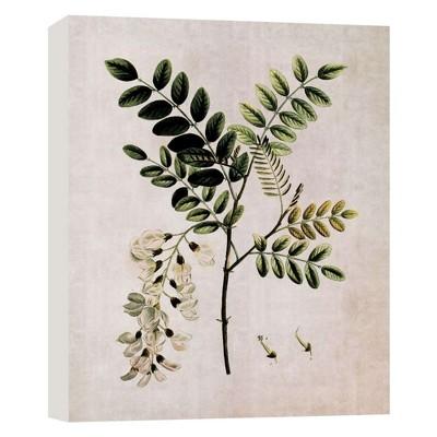 """11"""" x 14"""" Botany IV Decorative Wall Art - PTM Images"""