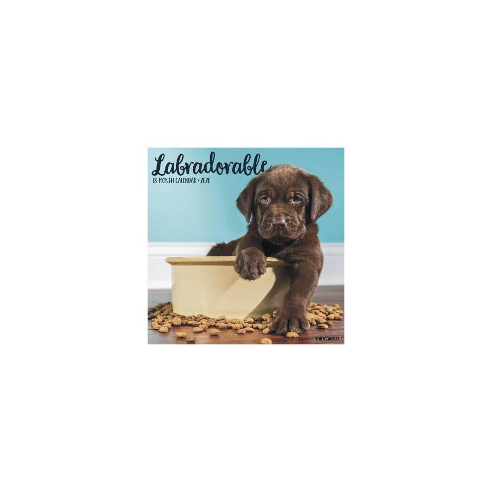 Labradorable 2020 Calendar - (Paperback)