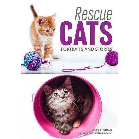 Rescue Cats - by  Susannah Maynard (Paperback) - image 1 of 1