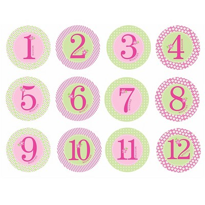 Pearhead Baby First Year Milestone Belly Stickers - Pink'