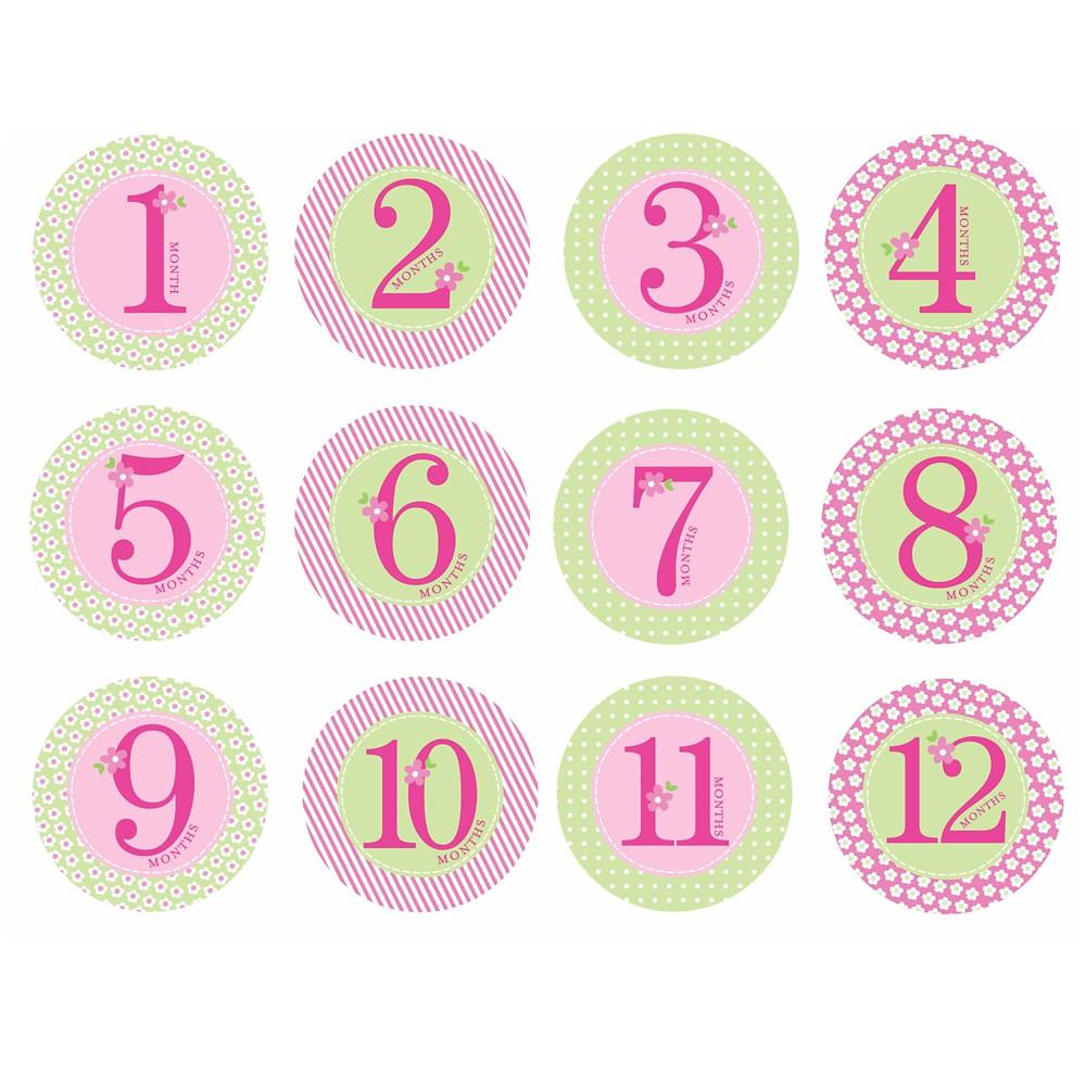 Pearhead Baby Milestone Stickers - Girls', Pink