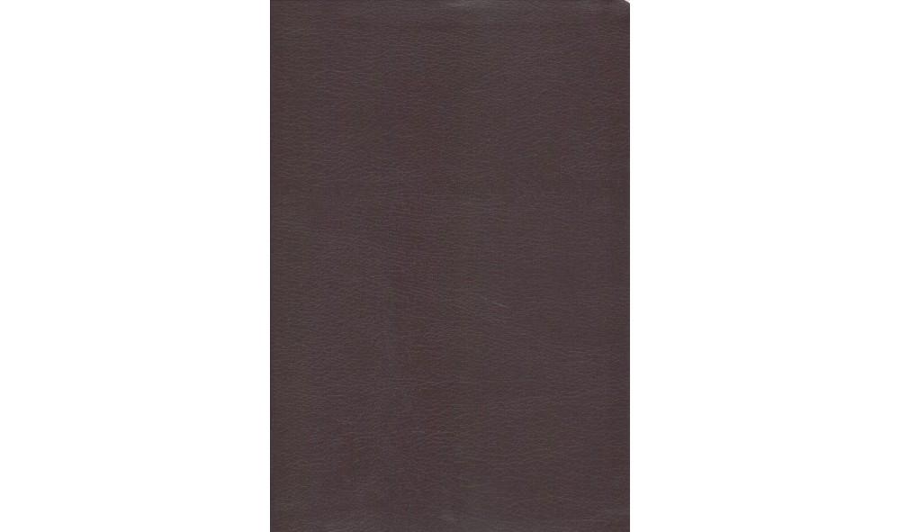 Holy Bible : New International Version, Burgundy, Bonded ...