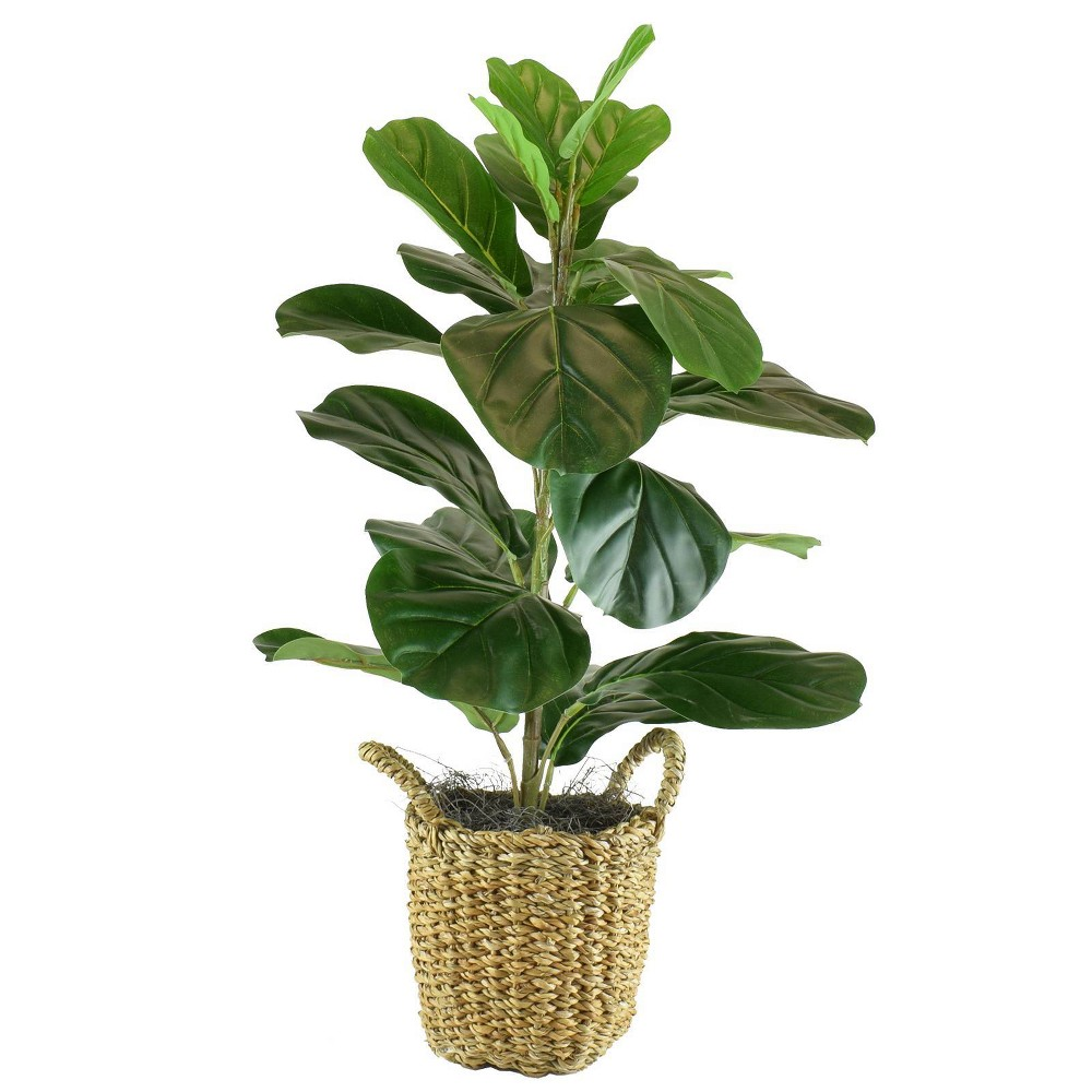 "Image of ""30"""" x 16"""" Artificial Fig Plant in Basket with Handles Green - LCG Florals"""