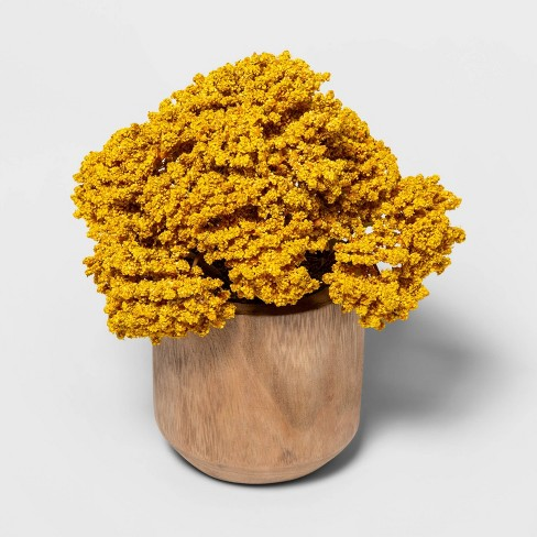 "8.5"" x 6"" Artificial Sedum Arrangement in Wooden Pot Yellow/Natural - Threshold™ - image 1 of 1"