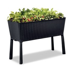 Easy Grow Elevated Rectangular Planter - Keter