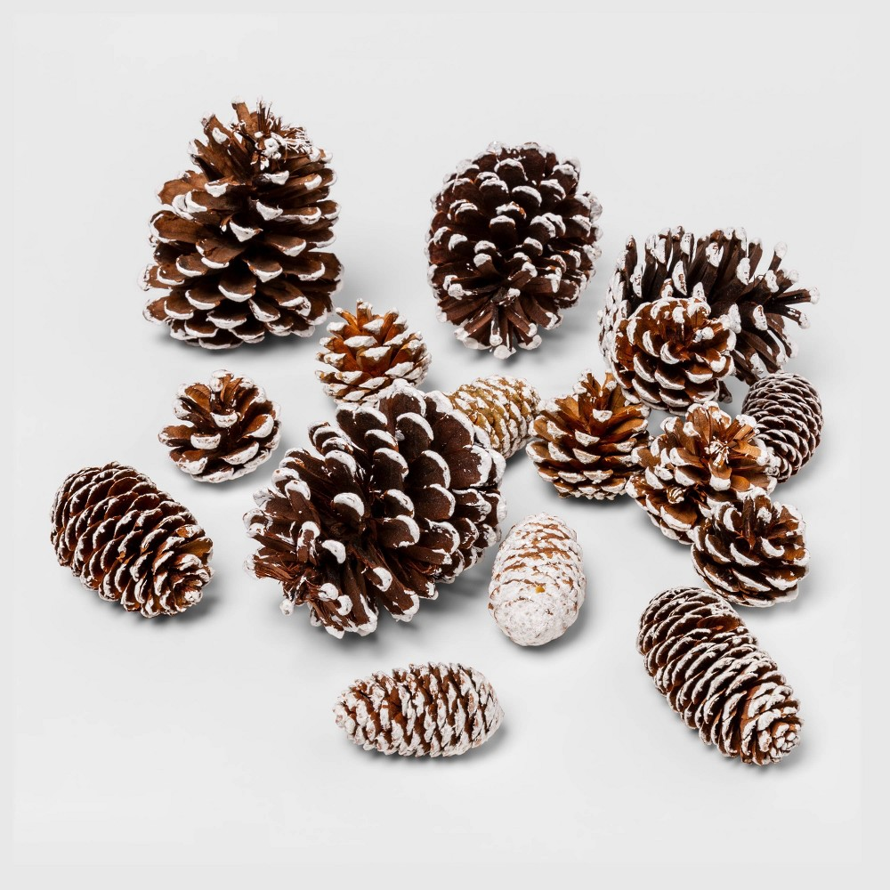 Image of 16ct Unscented Flocked Pine Cone Vase Filler Brown/White - Threshold