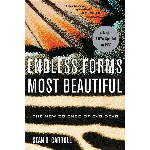 Endless Forms Most Beautiful - by  Sean B Carroll (Paperback) - image 1 of 1