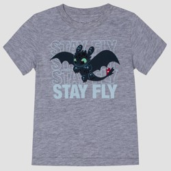 09a7af11 Toddler Boys' How To Train Your Dragon Toothless Short Sleeve T-Shirt - Gray
