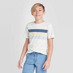 Boys' Short Sleeve Striped T-Shirt - Cat & Jack™ Blue/Gray