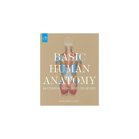 Basic Human Anatomy An Essential Visual Guide For Artists
