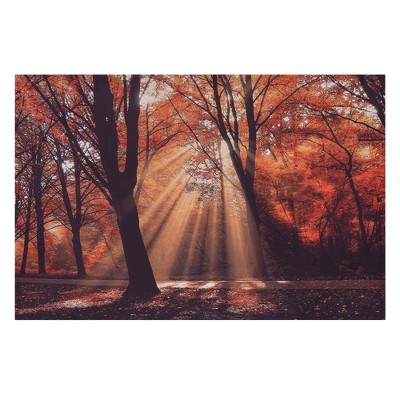 24 x36  Dressed To Shine Photography Canvas Art Red - Patton Wall Decor