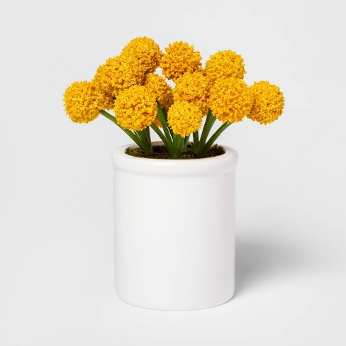 "8.5"" x 5"" Artificial Billy Ball Arrangement in Ceramic Pot Yellow/White - Threshold™ - image 1 of 1"