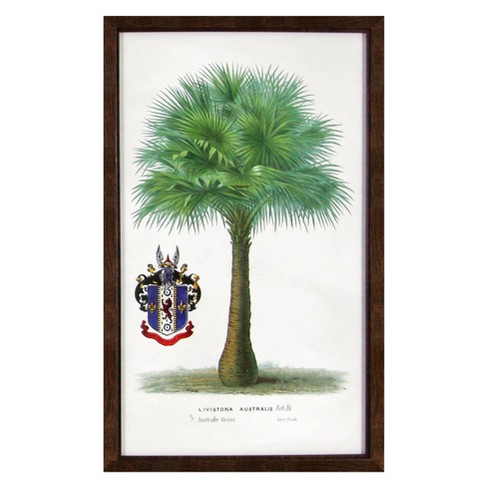 Vintage Framed Palm Tree Wall Art - Threshold™ : Target