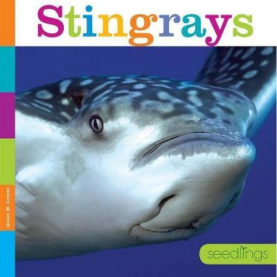 Seedlings: Stingrays - by  Quinn M Arnold (Paperback)
