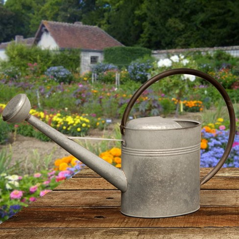 garden accents antique watering can silver 18 national tree company target - Garden Watering Can