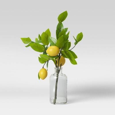 "16"" x 9"" Artificial Lemon Plant Arrangement in Glass Vase - Threshold™"