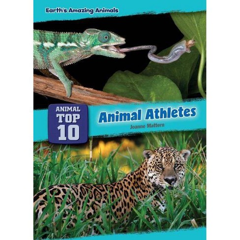 Animal Athletes - (Core Content Science -- Animal Top Ten) by  Joanne Mattern (Hardcover) - image 1 of 1