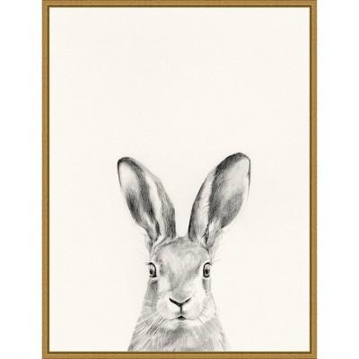 "18"" x 24"" Animal Mug I Rabbit by Victoria Borges Framed Canvas Wall Art Gold - Amanti Art"