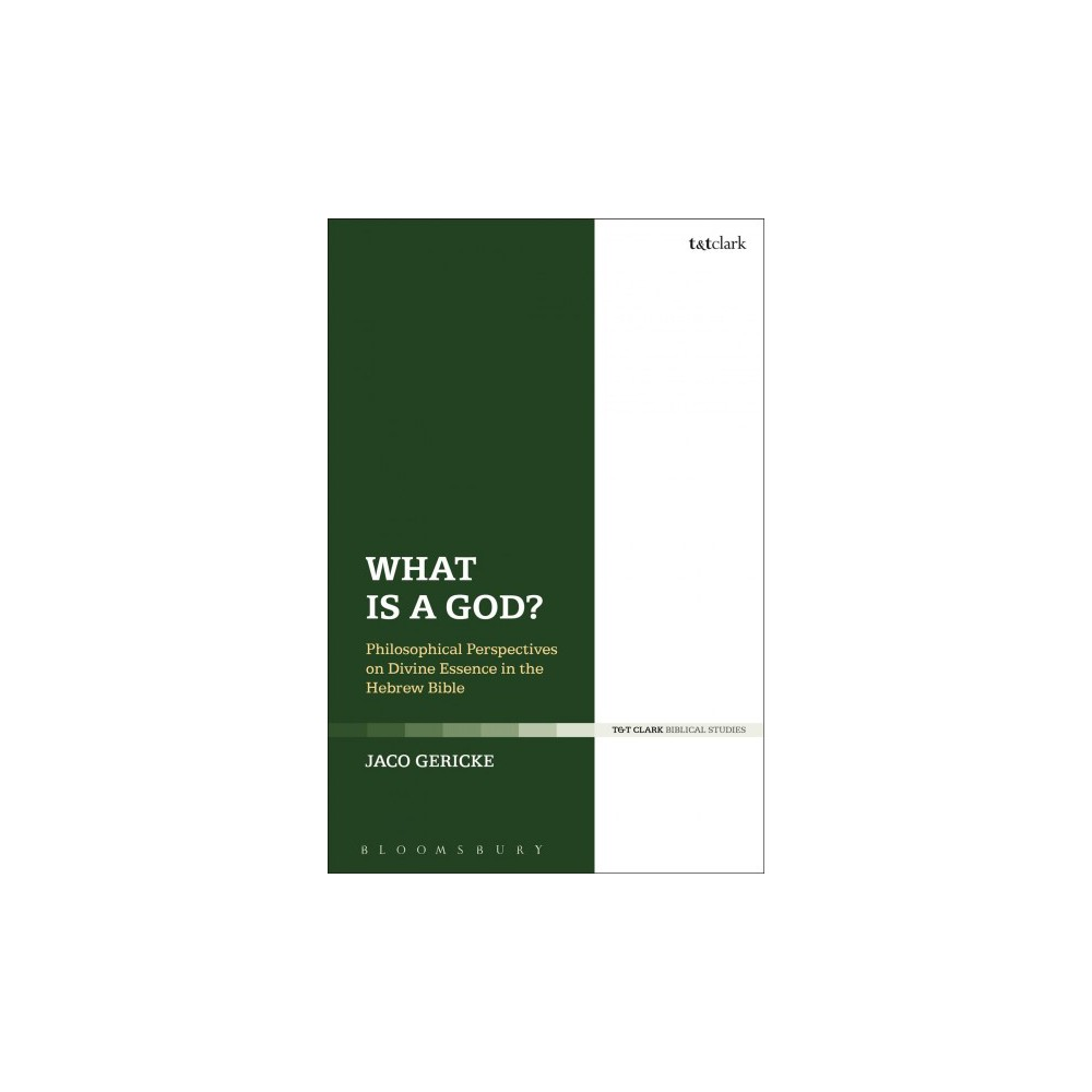 What Is a God? : Philosophical Perspectives on Divine Essence in the Hebrew Bible - Reprint (Paperback)