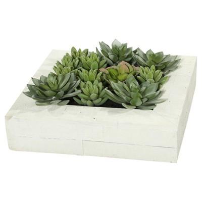 Artificial Wall Succulent Arrangement (12 )Green - Vickerman