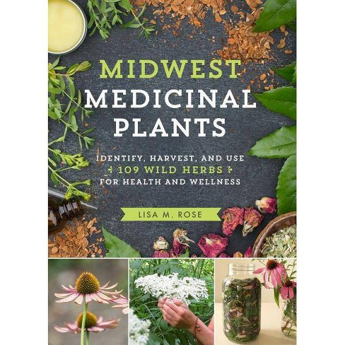 Midwest Medicinal Plants - by  Lisa M Rose (Paperback) - image 1 of 1