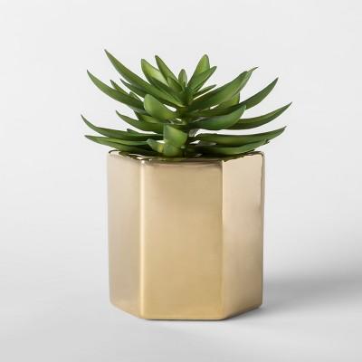 Faux Succulent Plant in Gold Pot - Project 62™