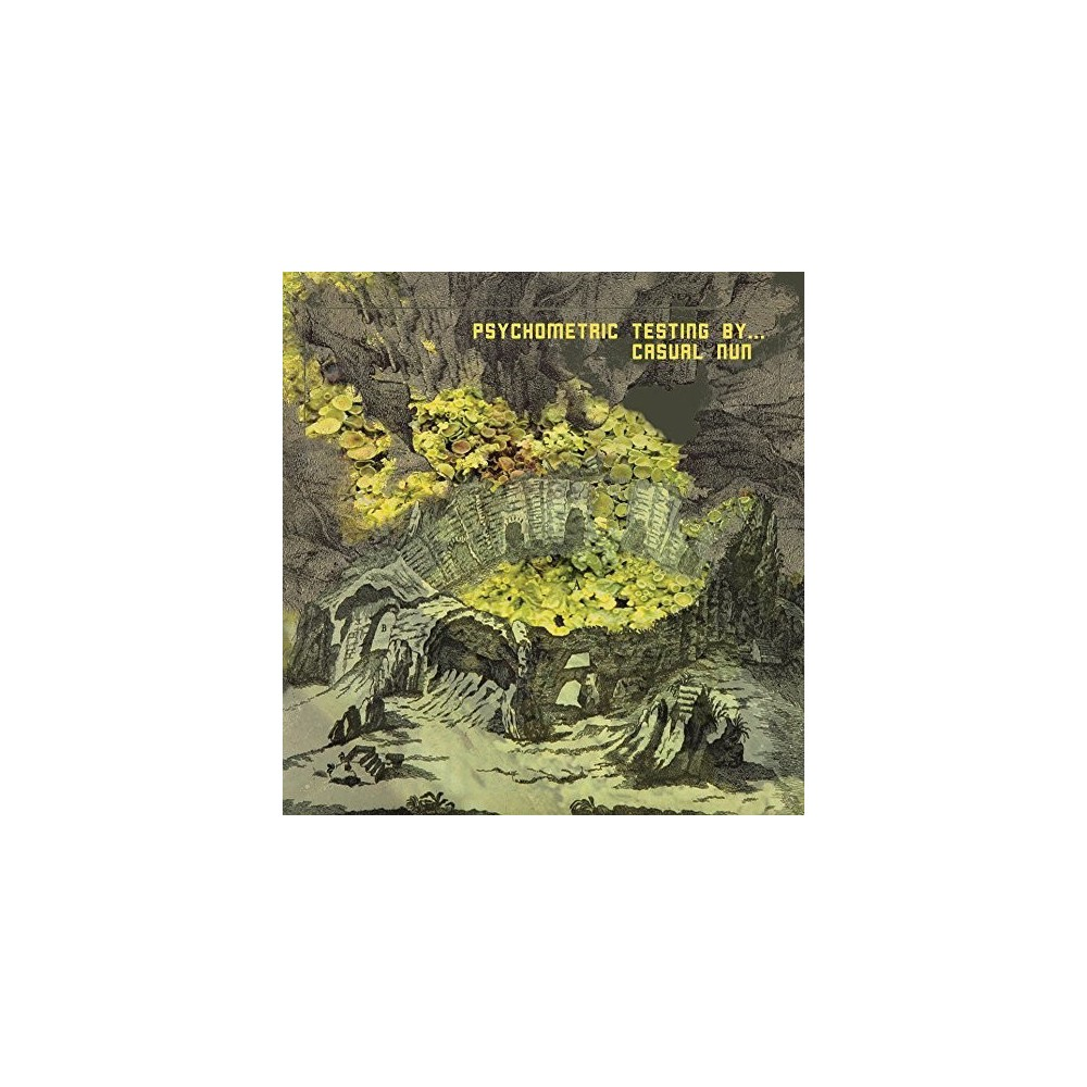 Casual Nun - Psychometric Testing By (Vinyl)