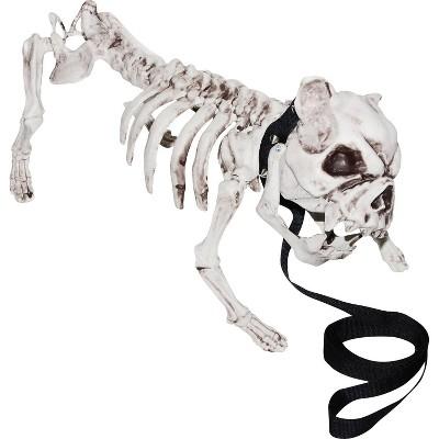 "17"" Halloween Dog Skeleton"