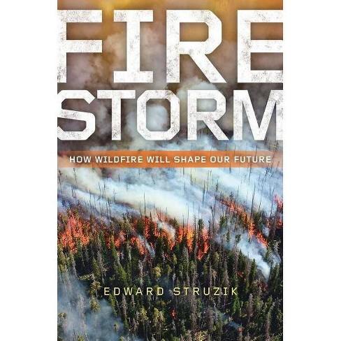 Firestorm - by  Edward Struzik (Paperback) - image 1 of 1