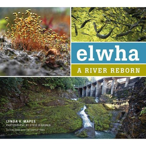 Elwha - by  Lynda Mapes (Paperback) - image 1 of 1