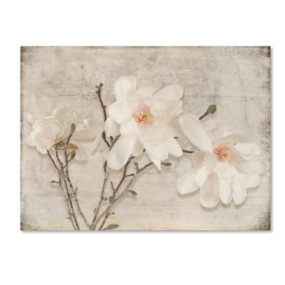 Spring Magnolia' by LightBox Journal Ready to Hang Canvas Wall Art - Cream