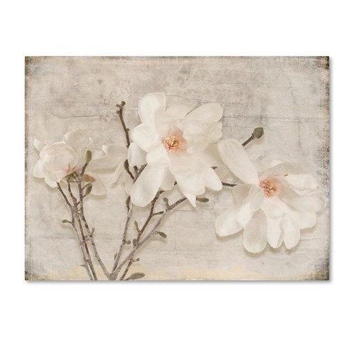 Spring Magnolia By Lightboxjournal Ready To Hang Canvas Wall Art