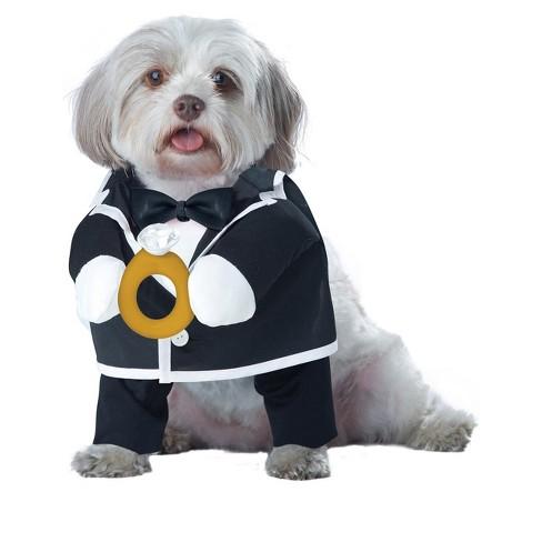 California Costumes Puppy Love-Groom Dog Costume - image 1 of 1