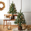 3ft/2pk Pre-lit Artificial Christmas Tree Virginia Pine Clear Lights - Wondershop™ - image 4 of 4