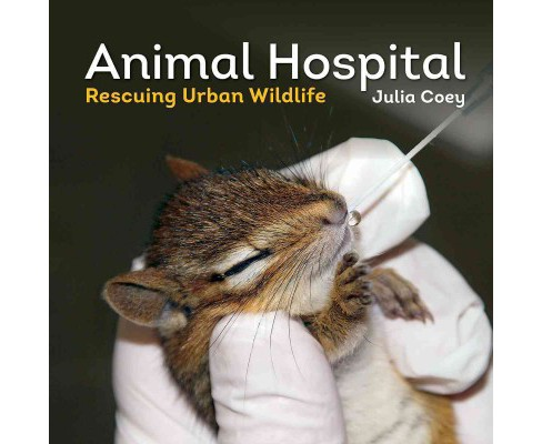 Animal Hospital : Rescuing Urban Wildlife (Hardcover) (Julia Coey) - image 1 of 1