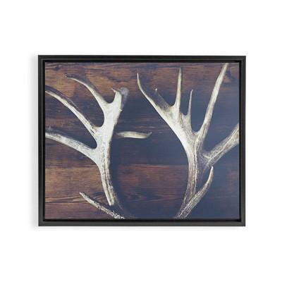 Ann Hudec Rustic Relic Framed Art Canvas Black - Deny Designs