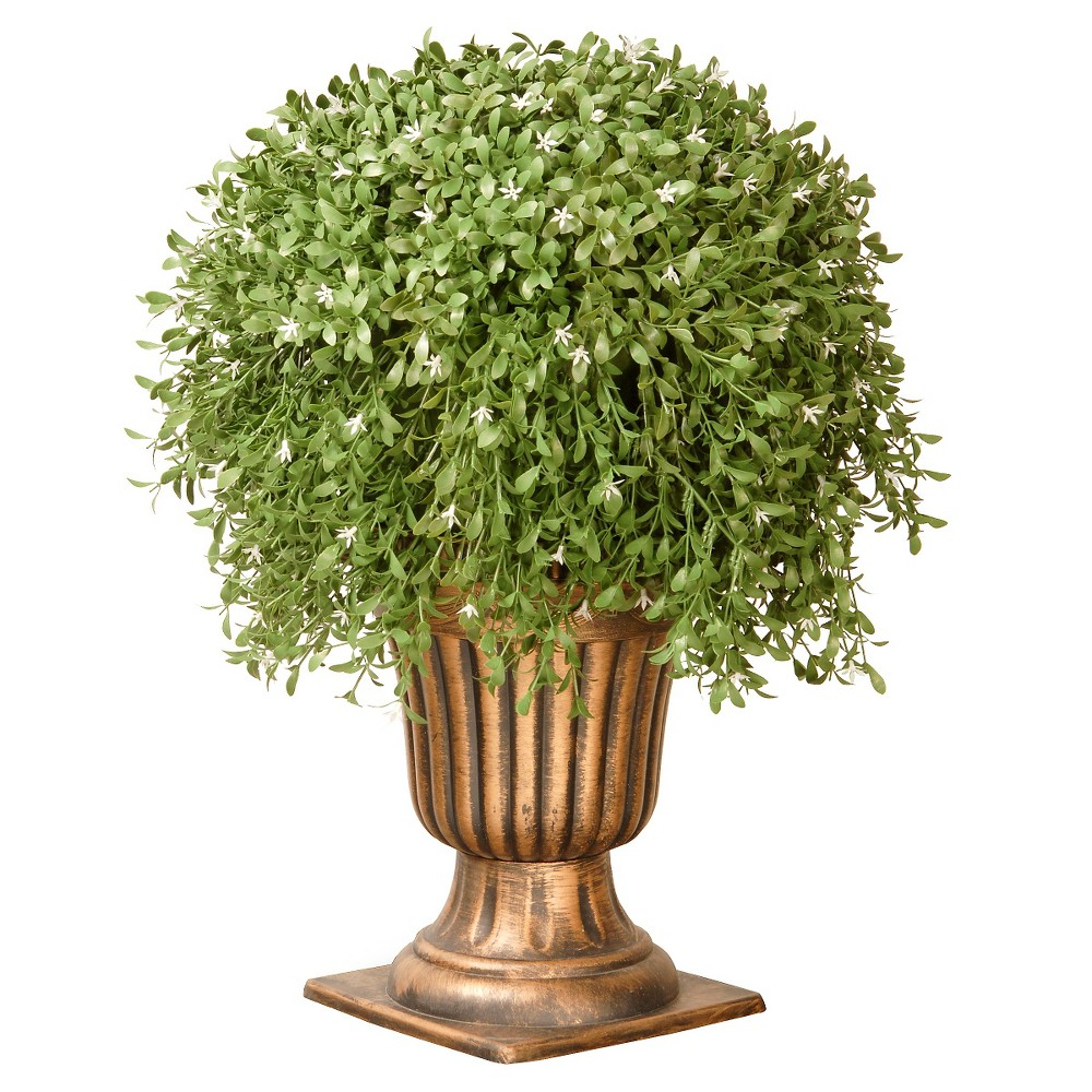 Argentea Plant with Gold Urn (26), Green