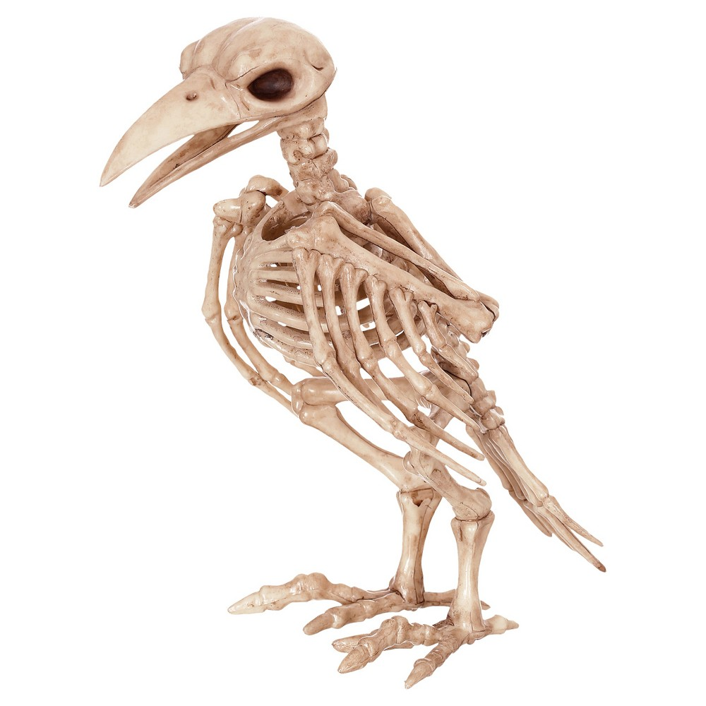 Image of Halloween Skeleton Raven Decor, Beige