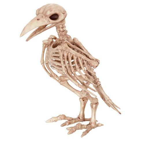 Halloween Skeleton.Halloween Skeleton Raven Decor
