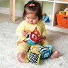 Infantino Discover and Play Soft Blocks - image 3 of 3