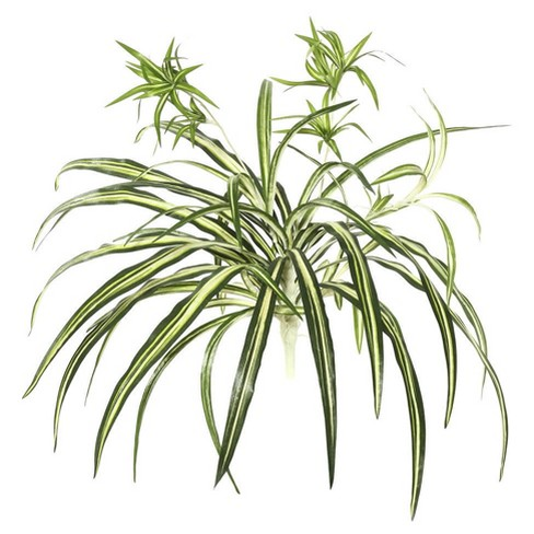 "Artificial Spider Plant (24"") Green - Vickerman - image 1 of 1"