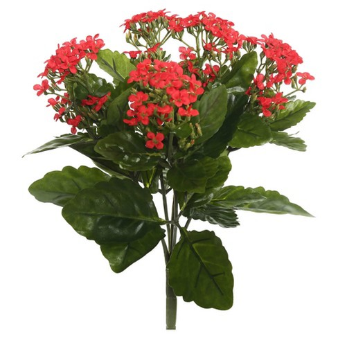 "Artificial Kalanchoe Bush (17.25"") Red - Vickerman - image 1 of 1"