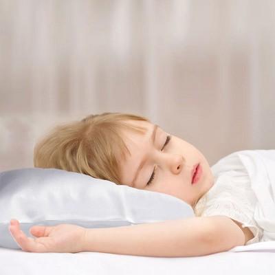 """1 Pc 14""""x20"""" 19 Momme Silk Envelope Pillow Cases Silver Gray - PiccoCasa"""
