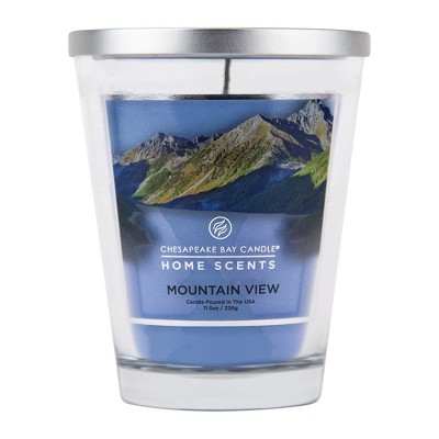 11.5oz Jar Candle Mountain View - Home Scents by Chesapeake Bay Candle